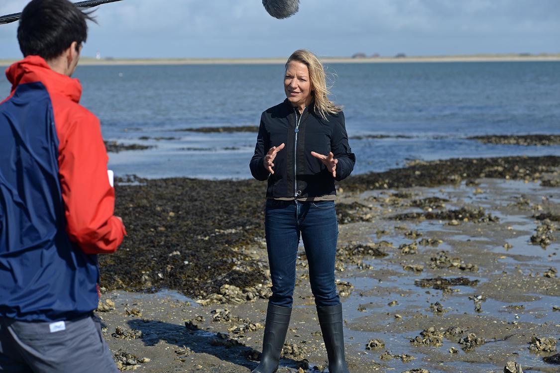 Meeresbiologin Antje Boetius erklärt Nachhaltigkeit auf Sylt.