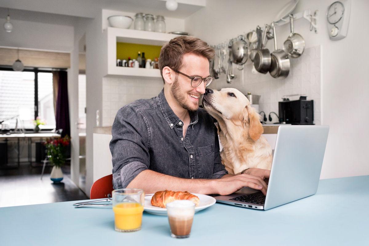 Fröhlicher Mann mit Hund im Homeoffice am Laptop